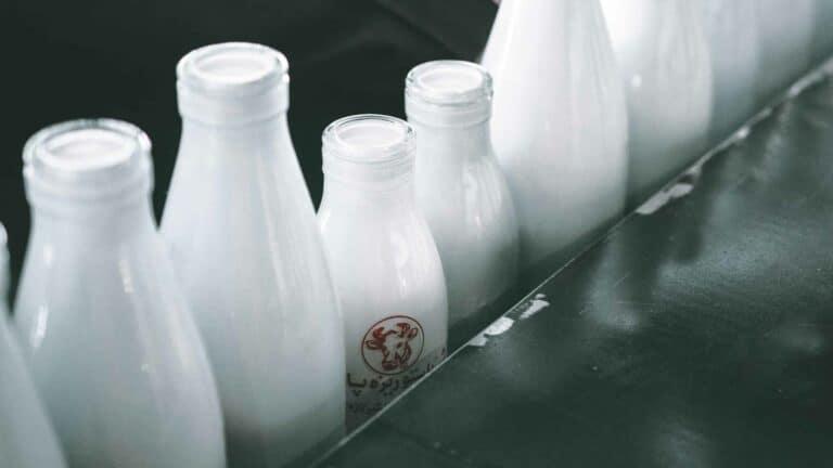 Melk is goed voor elk toch
